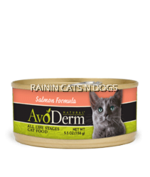 AVODERM NAT CAT SALMON CAN 5.5OZ