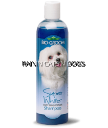 BIO-GROOM SUPER WHITE S'POO 12OZ