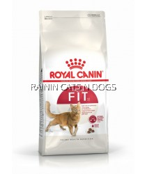 ROYAL CANIN FHN FIT 32 (4KG)