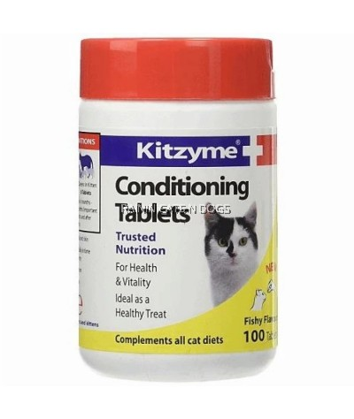 KITZYME CONDITIONING TABLETS (100 TABLETS)