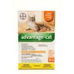 BAYER ADVANTAGE CAT SPOT ON S (0.4ml x 4 pipet)